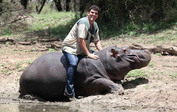 Marius Els Killed By His Pet Hippopotamus