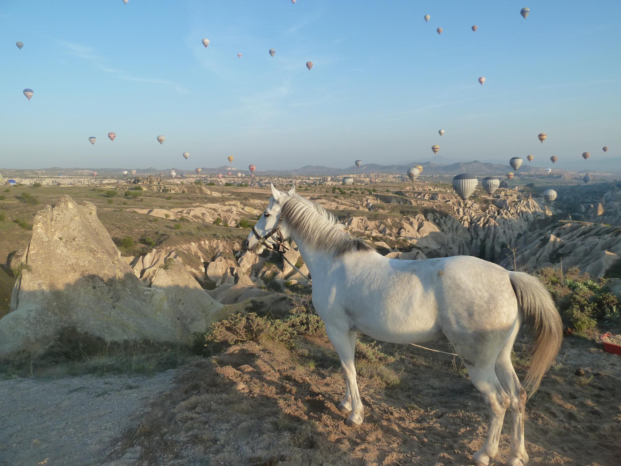 O Melhor da Capadócia a cavalo em meio às belas paisagens naturais