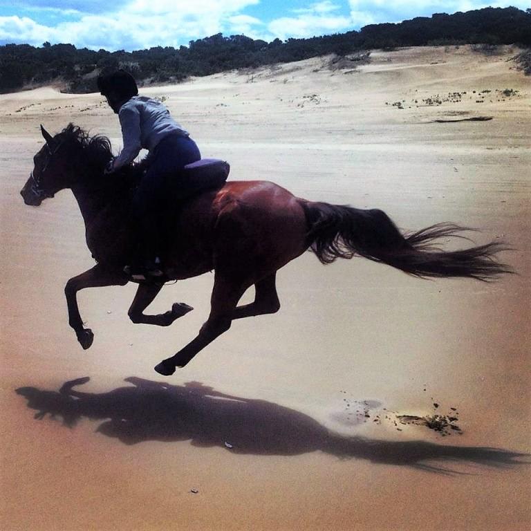 Expedições a cavalo