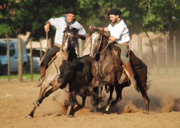 Uruguaiana se prepara para a 19ª edição da Festa do Cavalo Crioulo
