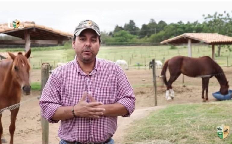A hora da ração para os cavalos