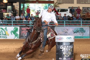 A genética do 'cavalo mais rápido do Brasil'