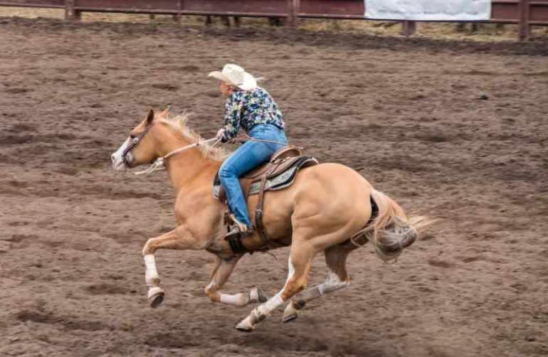 Aprendizado ou trauma: fique atento com aquela 'pegada' na boca do cavalo