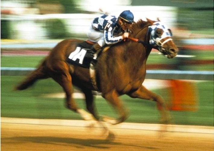 Secretariat é um dos melhores cavalos de todos os tempos