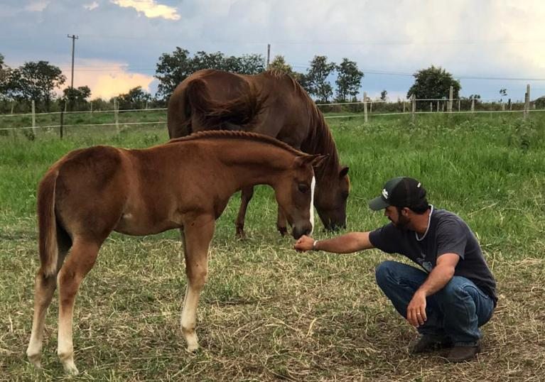 Competidores amadores de Três Tambores que decidem treinar seus próprios cavalos