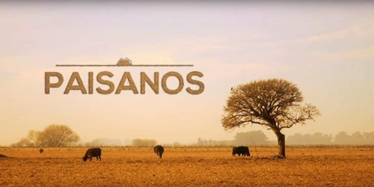 Paisanos: o retrato do trabalhar do campo Luciano Rodrigues trás neste artigo uma dica para você passar tempo de qualidade aprendendo sobre cavalos nessa quarentena