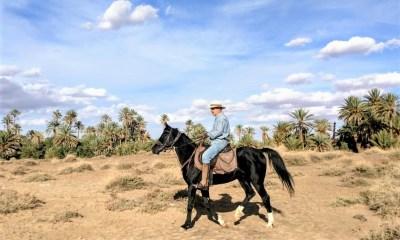 Long Ride – Grande Travessia no Marrocos Paulo Junqueira conta no artigo da semana sobre a cavalgada de 26 dias e 875 quilômetros que está agendada para fazer no Marrocos