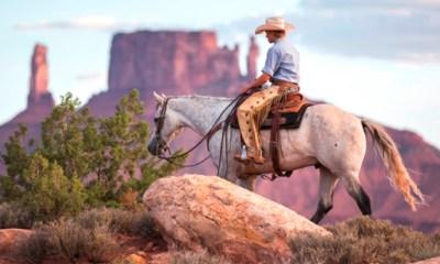5 qualidades indispensáveis para um cavalo de trilha. Acima de tudo, é preciso um bom cavalo, algo que pode fazer toda a diferença
