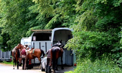 Entre tantos fatores de cuidados com os cavalos, o Bem-Estar Animal durante o transporte é essencial, hoje em dia, mais do que nunca