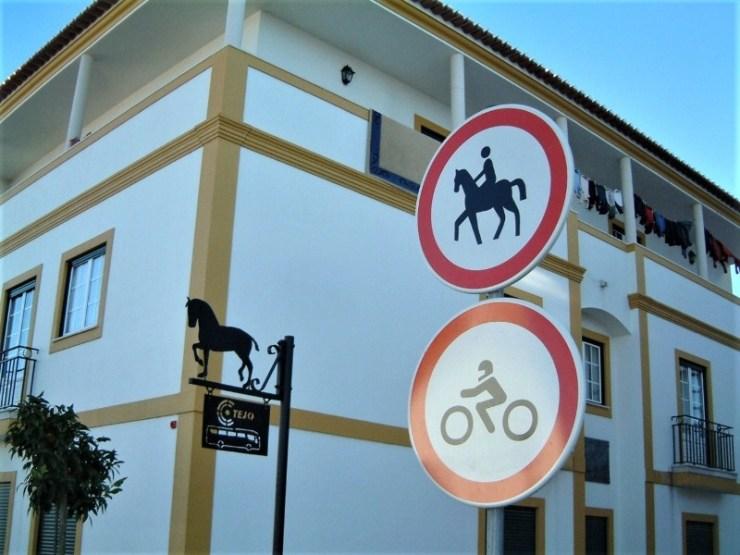 Paulo Junqueira Arantes conta em sua coluna da semana para o portal Cavalus sobre sua experiência em Portugal a cavalo