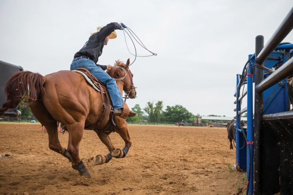 Dicas de Team Roping: manter seu cavalo livre para o boi tem tanto a ver com seu equipamento e equitação quanto com o treinamento do cavalo