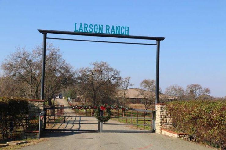 Desde que começou a falar, ainda criança, Jordan Larson, treinador e apresentador de cavalos de Rédeas, lembra dizer que viveria do cavalo