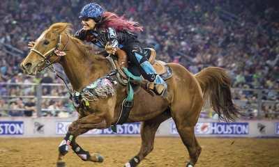 Claudia Ono em sua coluna da semana comenta sobre como você precisa acreditar no seu cavalo. Alguns foram taxados de problema e sem solução