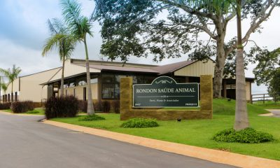 Conheça o Centro de Neonatologia da Pro Equus