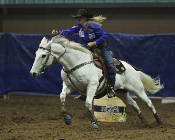 Claudia Ono fala em sua coluna da semana sobre os efeitos das embocaduras nos Três Tambores. Seu cavalo tem segurança dentro e fora de casa?