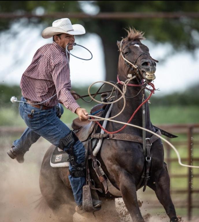 Winter Equestrian Festival no Salto; PRCA no Laço; Fort Worth e Arizona no Tambor; confira a atuação dos brasileiros nesse final de semana
