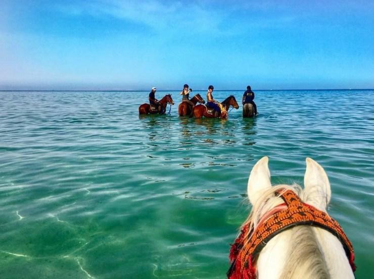 Cavalgar no deserto e nadar com os cavalos no Mar Vermelho  No último dia, após o café da manhã, saída da cavalgada cruzando o deserto até chegar na deslumbrante Baía de Makadi, no Mar Vermelho.  Depois de tirar as selas, é hora de entrar com o cavalo nas tranquilas águas cristalinas do Mar Vermelho. Uma experiência incrível para encerrar uma viagem a cavalo tão especial.  Por Paulo Junqueira Arantes Cavaleiro profissional e Diretor da agência Cavalgadas Brasil www.cavalgadasbrasil.com.br  Veja outras notícias da editoria Turismo Equestre no portal Cavalus