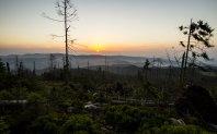 Pohľad na východ slnka neďaleko od vrchu Smrekovica, smerom na východ po žltej značke.