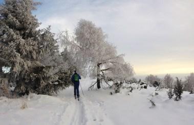 Stopa po hrebeni Čergova