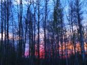Sunset at 9:30 pm