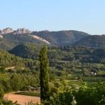 Côtes du Rhône Cave Le Petit Grain Rieumes