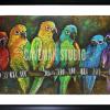 Parrot Family1