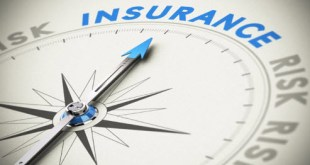 7 Principles of Insurance : Explanation with Examples