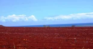 Red Soil | Types of Soil