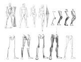 blocagem anatomia 03