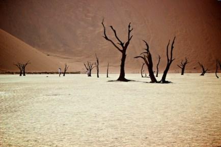 Deadvlei in the Namib desert, Namibia