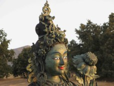 tara-bronze-face-landscape