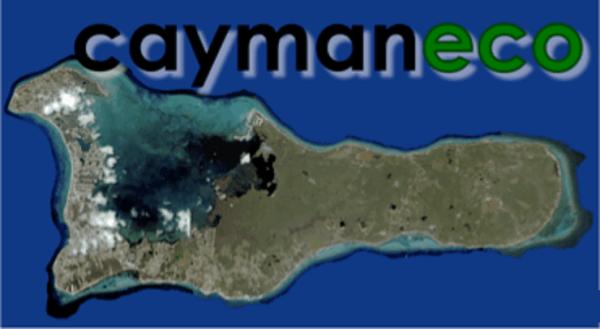 Cayman Eco - Beyond Cayman Peatland drainage in Southeast ...