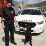 K-9 Unit gets new four-legged recruit