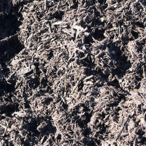 Black mulch revised