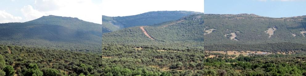 landscape monteria
