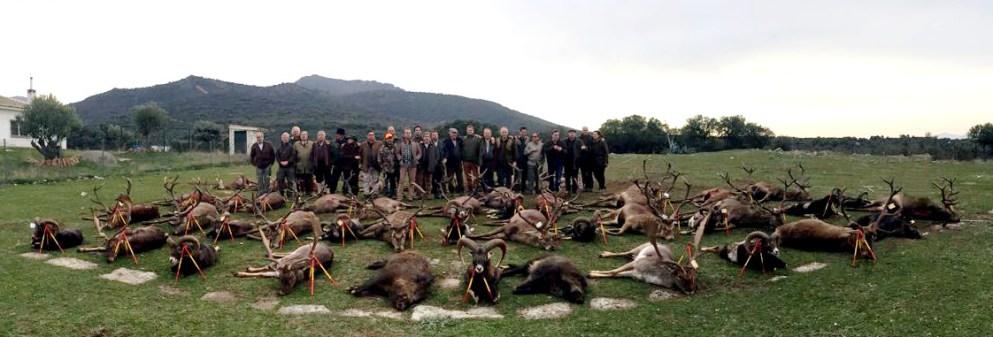 monteria cazasport
