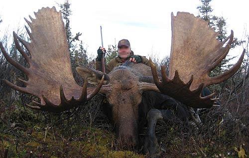 moose-kamchatka