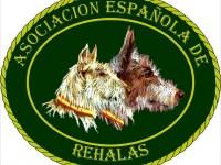logo-AER-1024x858