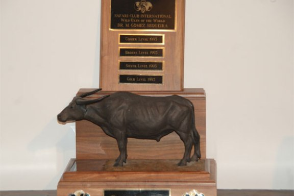 20120511-wild-oxen-world