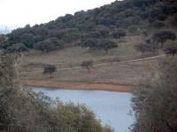 El agua en nuestro coto y el manejo de las escorrentías