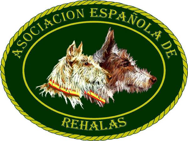 images_wonke_actualidad_nacional_20120912_aer