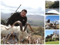 Irlanda… Experiencia tras las feral goats