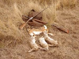 «En la gestión de la predación es más interesante y práctico proteger contra la predación que eliminar predadores. La protección consiste en limitar el acceso de los predadores a las especies presa. Es una acción duradera en el tiempo. El control directo, es una actuación puntual que no sirve de nada a la vuelta de unos meses».