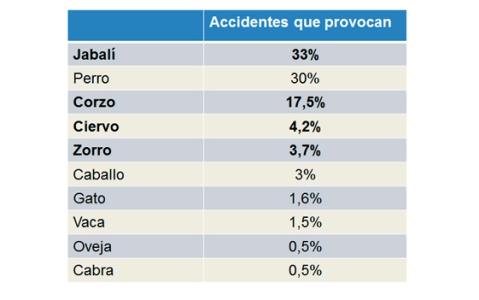 El porcentaje de accidentes que provocan los animales | Foto: Centro de Estudios Ponle Freno-AXA