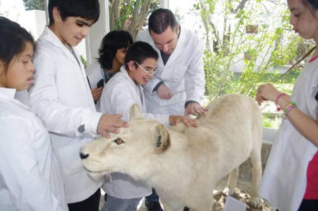 SCI safari sensorial argentina