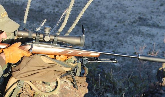 caza con silenciador © SCI