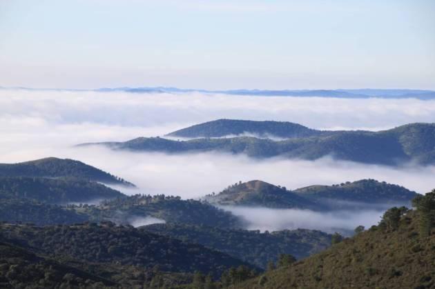 jabardillo 9 paisaje sierra