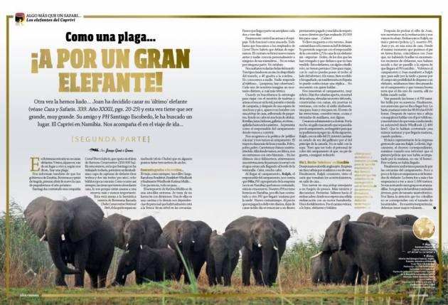 031_i elefantes