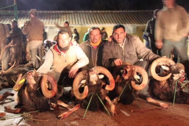 Armando y José, padre e hijo, junto a una collerita de muflones…