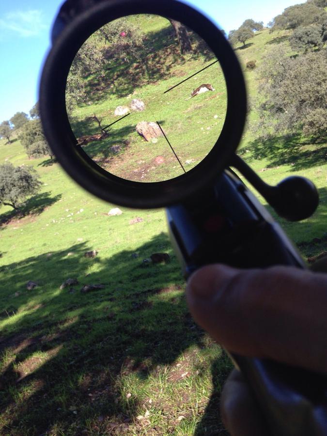 IMG_5013  las encinosas cazador